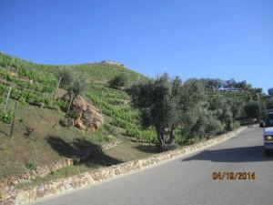 Driveway up to Malibu Mountain Top Spanish Home