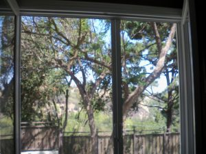 Studio City Window Screens