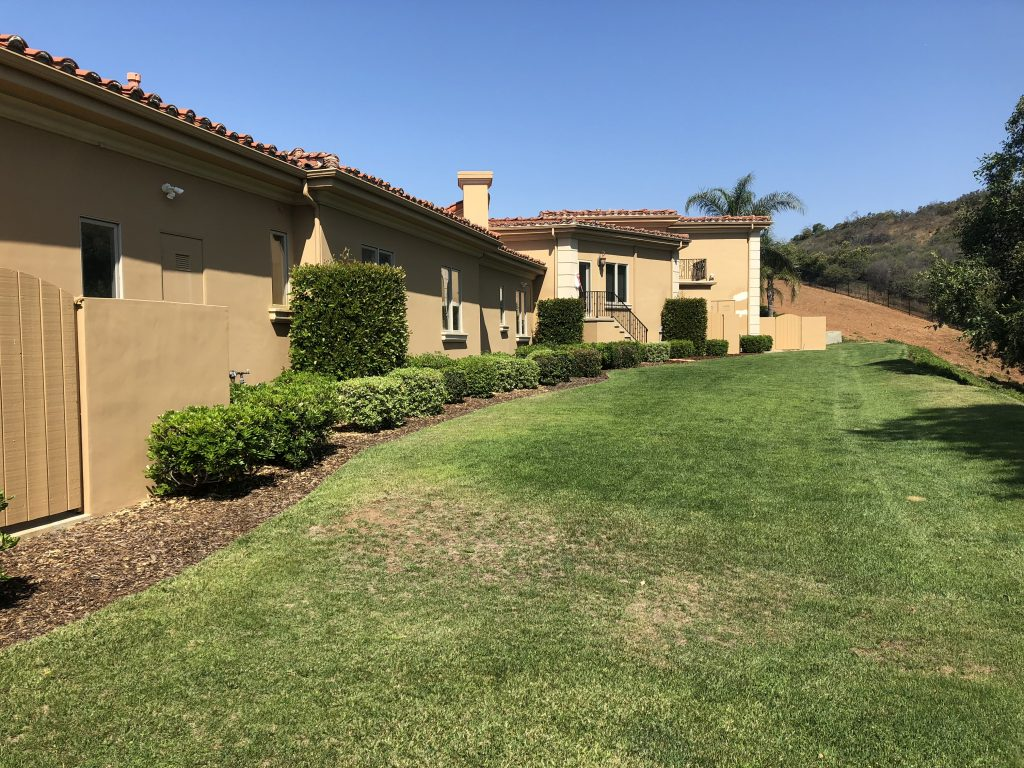 Window screen replacement in Calabasas